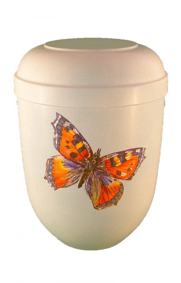 ✰ Bio Urne weiss Schmetterling ✔ hellblau glänzend ✔ Urnen kaufen ➥