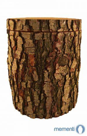 Biourne aus Baumstamm Urne Erle- natur Bestattungsurne aus Erlennholz - Holzurne kaufen