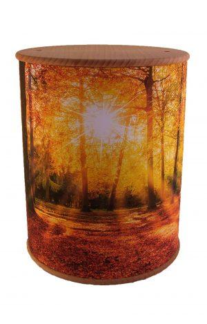 Schöne Biourne Zylinder rundum bedruckt Herbst Wald- Urne kaufen Urnen günstig