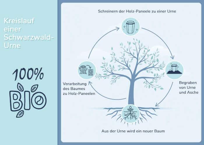 Der Zyclus der Schwarzwaldurne