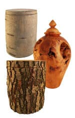 Baum & Wurzelholz